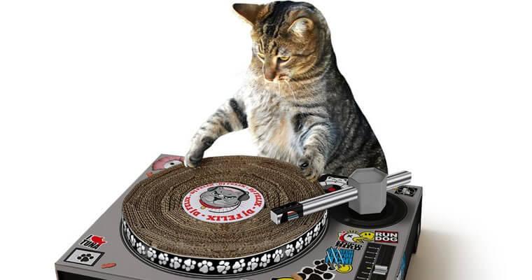 rascador gato 2