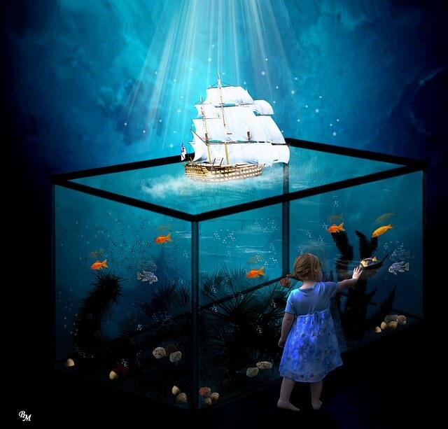 aquarium-702583_640