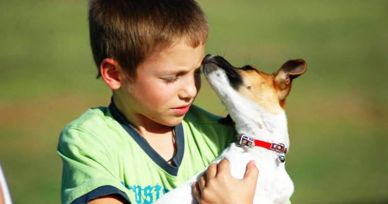 perro y niño