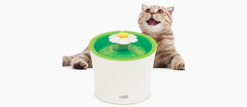 fuente catit para gatos