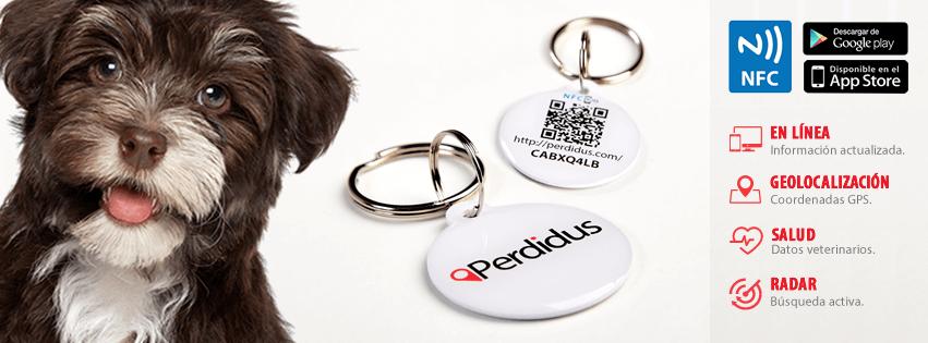 Placa identificativa para mascotas
