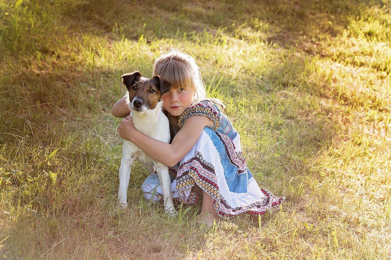 perro amor persona