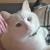 Foto del perfil de minu