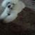 Foto del perfil de Olalla Martinez
